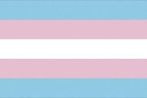 trans_pride_flag